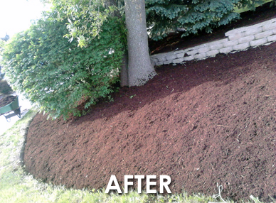 low cost mulch landscaping company